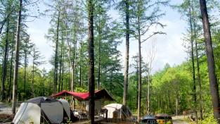 국립변산자연휴양림 숲속의집 위도항, 최고경쟁률 131 대 1 기록