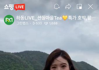 북천 꽃양귀비 개화기 라이브 커머스 진행